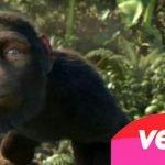 Sopa de Macaco Uma delicia!!!!!