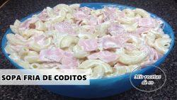 Sopa fria de coditos muy facil