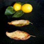 paparajotes   folla de limon  hoja de limon   mabel mendez  Mi receta de cocina