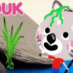 Mouk - Mouk come una paella y baila la Bossa Nova | VERANO de dibujos animados para niños