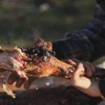 CORDERO ASADO - recetas de cocina faciles rapidas y economicas de hacer