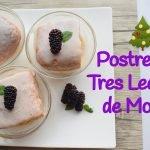 Postre de Tres Leches de Mora - Recetas para Navidad/ Año Nuevo