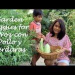 Arroz con Pollo y Verduras con Vegetales de Jardín | Jardín a la mesa | Verduras de verano | Jardinería