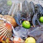 ¡Increíble PAELLA DE MARISCOS forrajeada cocinada en la playa!