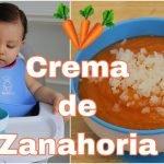 Crema de Zanahoria 🥕 para bebés y niños 6 meses a más | Sopa de zanahoria 🥕 | Papilla de Zanahoria