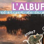 1 DÍA EN L'ALBUFERA // Paseo en Barca por los arrozales + Paella // VALENCIA