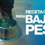 Receta para perros que necesitan bajar de peso