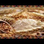 Como Es El Germen De Trigo 👳 El Germen De Trigo Para Bajar De Peso  Mi receta de cocina