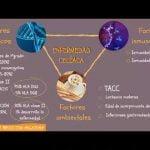 Enfermedad celiaca - Dra Wirz y Dra. Moles  Mi receta de cocina