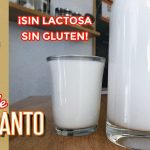 Leche de amaranto (sin lactosa, sin gluten) - Cocina Vegan Fácil