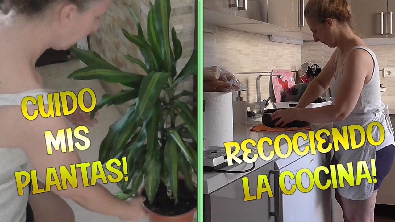 Recogiendo la Cocina / Receta de Arroz con Chipirones / Cuidando mis Plantas | Maria Terron