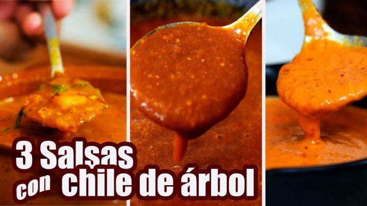 SALSAS con CHILE de ARBOL | 3 RECETAS | JUS PALTA - Comida Casera