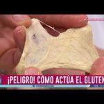 Todo sobre el gluten y celiaquía  Mi receta de cocina