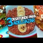 3 DESAYUNOS SALUDABLES para PERDER PESO 🍎  | Recetas Fitness Fáciles
