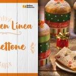 Curso en Línea - Panettone Mi receta de cocina