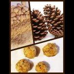 Mazapan de piñones sin gluten / Panellets Mi receta de cocina