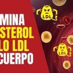 🔴 El Colesterol Alto, Lo Eliminas Con Estas Recetas Caseras 👉 Cómo eliminar el colesterol del cuerpo