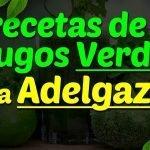 Recetas De Jugos Verdes Para Adelgazar: Jugos Naturales Para Bajar De Peso