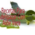 Aloe Vera Para Bajar De Peso / Sabila Para Bajar De Peso