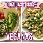 COMIDAS Y CENAS SALUDABLES PARA LA SEMANA (Vegano y Vegetariano)