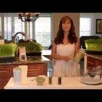 Como Cultivar Los Alimentos Vivos En Tu Cocina Facil, rapido y divertido!