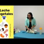 Recetas de Cocina para Alergias. Episodio 4/24. Sustituto de leche parte 4  Mi receta de cocina