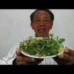 5 Recetas De Jugos Verdes Para Adelgazar O Bajar De Peso