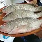 Pescado Almeja Pata De Mula Marisco Jaiba Receta De Cocina huachinango el marisquero lencho 4x4