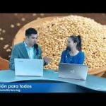 """CEREALES ANDINOS: """"LOS SUPERALIMENTOS""""  Mi receta de cocina"""
