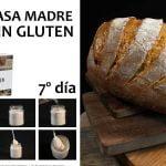 RETO 7º día MASA MADRE y RECETA PAN BLANCO Libro Pan Casero Sin Gluten  Mi receta de cocina
