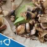 Receta para preparar tacos de champiñones, rajas, elotes y queso. Receta de tacos / Receta