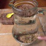 Agua de linaza para bajar de peso /FABI CEA